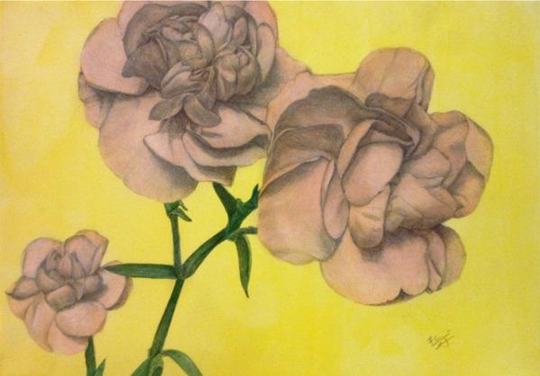 黄色 ピンク 花 絵