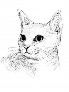 猫  雑貨 グッズ