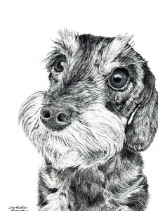オーダーメイド 犬