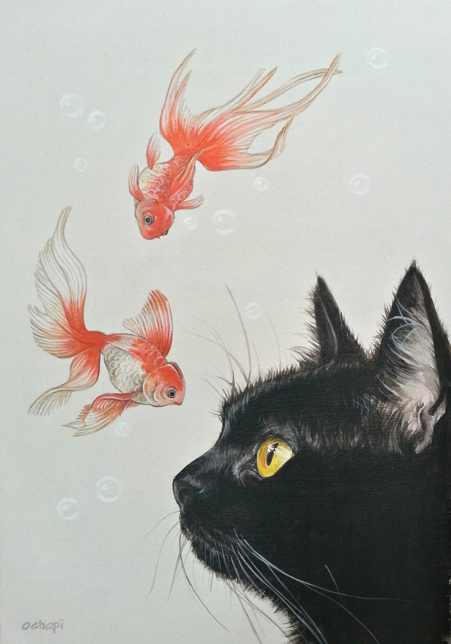 「金魚と黒猫」/おちょぴ
