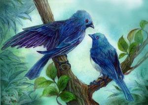 「Blue Birds」
