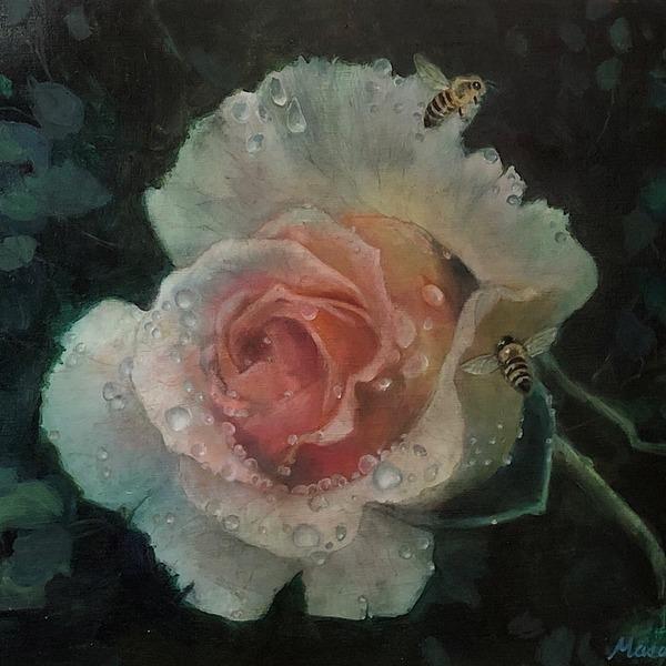 「薔薇と水滴」