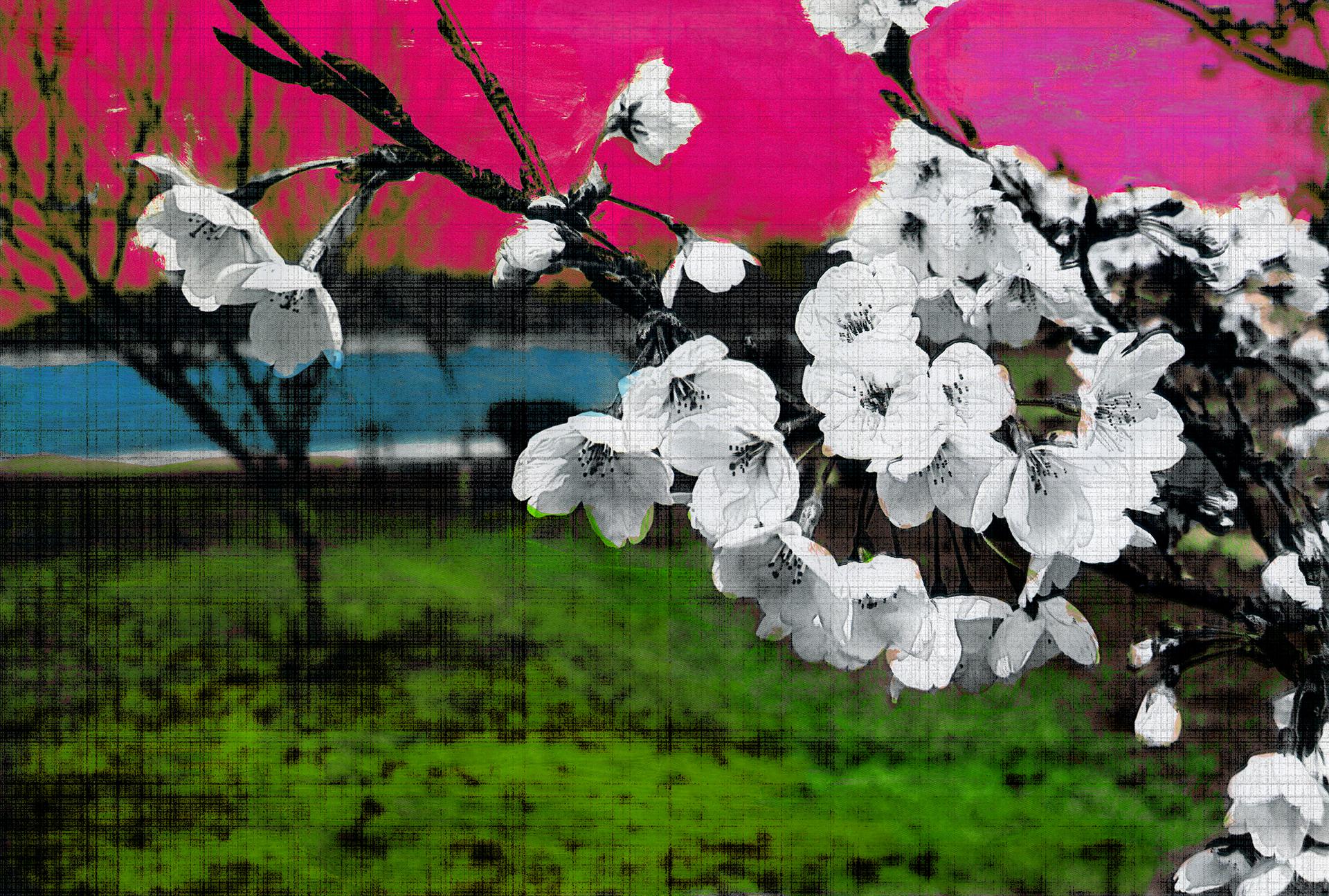 「Cherry Blossom 2(改)」