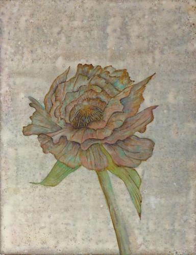 「flower」
