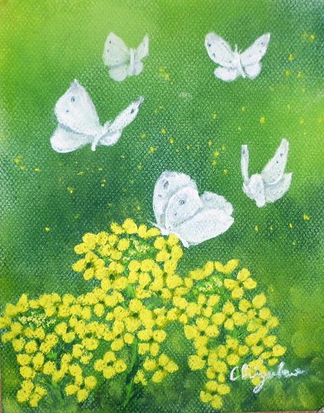 「菜の花と蝶」