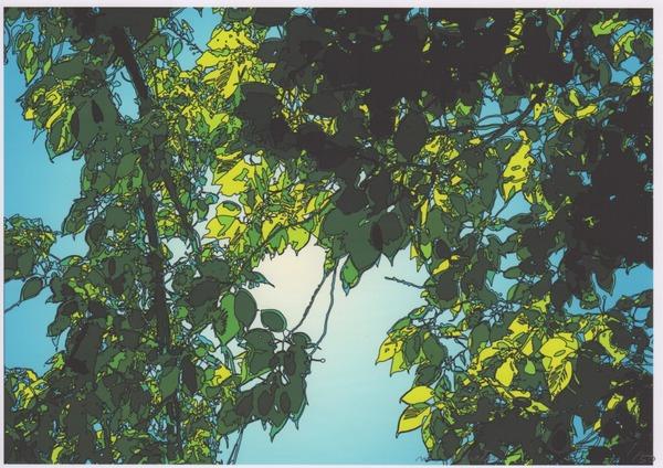 「日差し〜太陽(1/50)」