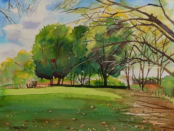 「大きな木のある公園」