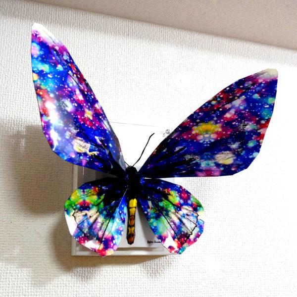 「煌く蝶は羽根を広げる」
